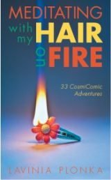 Meditating with my hair on fire book by Lavinia Plonka